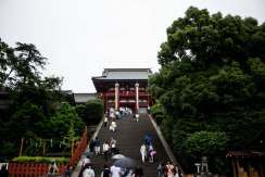 鶴岡八幡宮 Tsurugaoka Hachimangū